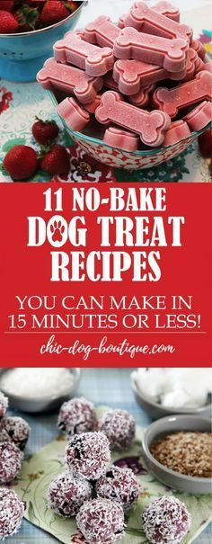 Do you love making Dog Treats? Making Homemade Dog Treats is even more simple when you don't have to bake anything! Check out these 11 Super Easy Dog Treat Recipes that you can make in 15 minutes or less out of common foods from your pantry. #Dog