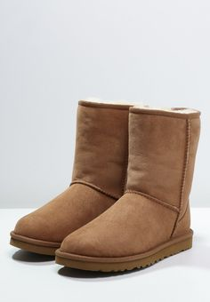 brosse chaussure ugg