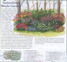 Perennial bed plan from Michigan Bulb Co west garden