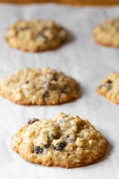 Soft and chewy on the outside, crispy around the edges, packed with raisins and spice... You've got to try them. #aspicyperspective #foodblog #foodie #instayum #hungry #thekitchn #onmytable #dailyfoodfeed #foodlove #foodpic #instafood #foodstagram #tasty #oatmealraisincookies #oatmealraisin #oatmeal #raisin #oatmealcookies #homemade #cookies #cookierecipe #easy #simple #dessert #sweettreat #sugar The Best Oatmeal Raisin Cookie Recipe, Soft Oatmeal Raisin Cookies, Butter Pecan Cookies, Chocolate Sugar Cookies, Oatmeal Cookie Recipes, Caramel Cookies, Coconut Cookies, Oatmeal Blueberry Muffins Healthy, Healthy Oatmeal Cookies
