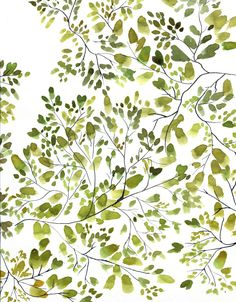 Utterly lovely. This combines some of my favorite things (and colors) in creating imagery -- organic shapes, brush strokes intact, and delicate linework. Suggestive more than representative.   Leaf Canopy watercolour | Isabelle Sykes |