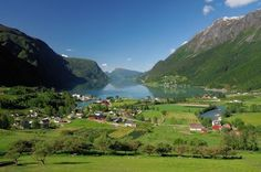 What a greenery!!! Skjolden by the Sognefjord