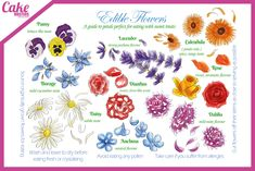 A useful guide to edible flowers from Cake Masters Magazine… Now you know which flowers are edible, why not crystallise them to go on your cakes? Cake Frosting Recipe, Frosting Recipes, Cake Tutorial, Flower Tutorial, Cake Decorating Magazine, Edible Flowers Cake, Calendula, Pansies, Fondant