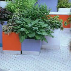 Colorful plant pots
