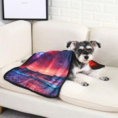 Santiro 3D Printed Stylish Unisex White Pet Dog Print Great for outdoor walking Convenient Mesh Slip on