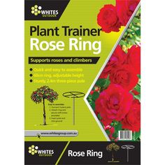 Whites Outdoor 2400 x 600mm Green Plant Trainer Rose Ring