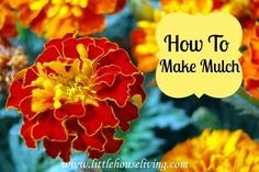 How to Make Mulch (Preparing the Garden and Flowers for Winter)