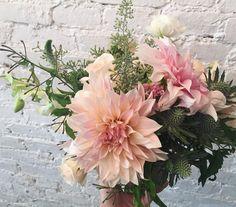 "flowergirlnyc: "" cafe au lait dahlias are back in season! #yay! (at Flower…"