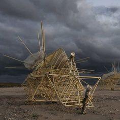 Thoe Jansen / Strandbeest