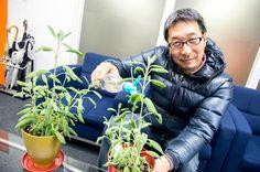 Mr.Katou https://www.facebook.com/herbsdiary
