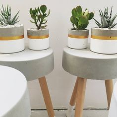 Cylinder concrete planter round succulent pots small and large indoor planter mini pot concrete decor Concrete Pots, Concrete Planters, Diy Planters, Concrete Crafts, Concrete Projects, Small Succulents, Succulent Pots, Succulents Garden, Large Indoor Planters