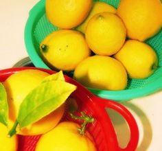 Secrets of Lemons
