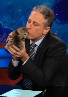 the only thing better than jon stewart is jon stewart kissing a kitten ♥