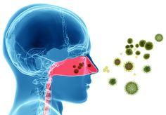 Remedios naturales para las alergias nasales