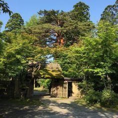 朝一 亀の井別荘さんへ(-) #亀の井別荘 #シーデスタ #siddesta  #湯布院
