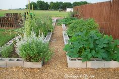 cinderblock garden - Google Search