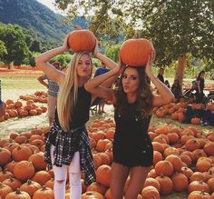 Pin by murphy on autumn fall photos, fall friends, bff pictures. Best Friend Pictures, Bff Pictures, Friend Pics, Tumblr Fall Pictures, Cute Fall Pictures, Fall Tumblr, Beautiful Pictures, Pumpkin Patch Pictures, Pumpkin Pics