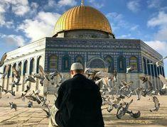 Allah God, Allah Islam, Islam Quran, Palestine Art, Surrender To God, Religion, Dome Of The Rock, Mekkah, Galaxy Wallpaper