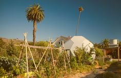The Ecology Center, in San Juan Capistrano, is an exciting educational center, that engages individuals, families, and students in fun, hands-on activities that teach practical, environmental solutions at the household and community level.