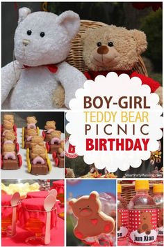 Boy's and Girl's Teddy Bear Picnic Birthday Party Ideas