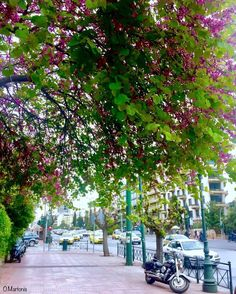 Vasilissis Sofias Avenue,Athens,Greece,