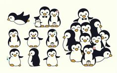 Family penguins                                                                                                                                                                                 More