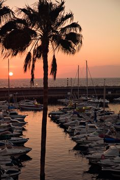 Playa de las Americas, #Tenerife http://www.thomascook.com/holidays/spain/canary-islands/tenerife/?utm_medium=soc&utm_source=pinterest&utm_campaign=engage&utm_content=posting