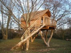 This is the Nautilus Tree house, France. Not so much a tree house, but rather a house on stilts with one leg being a tree while the others are the limbs of felled trees.