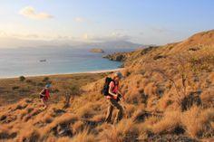 Besoin de voyage ? Découvrez l'Indonésie avec notre circuit aventure sur les petites îles de la Sonde ! Paysage magnifique, non ?