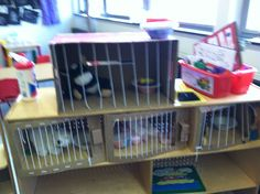 Cages for Humane Society in PET/VET dramatic play theme