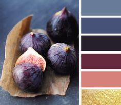 color palette!