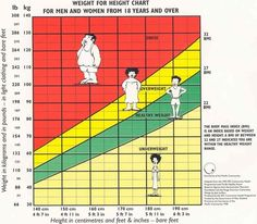 Photographic HeightWeight Chart     Lbs Bmi  Need