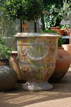 I Love the patina on these urns. I adore these fabulous French 'pots d'Anduze'! garden urn, love the colors Container Plants, Container Gardening, Container Flowers, Vase Anduze, Easy Vegetables To Grow, Vases, Pot Jardin, Garden Urns, Pot Plante