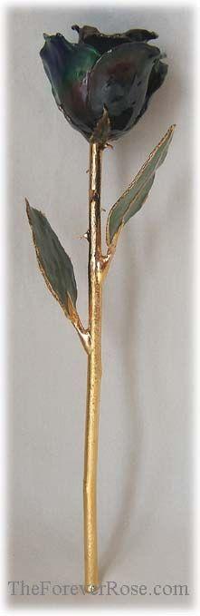 """""""Living"""" (Color Changing) Gold-Trimmed Rose"""