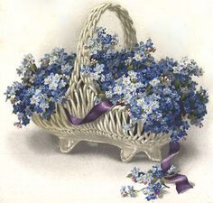 forget me not flower blue small vintage