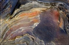 Coloured layers of rock, still wet from the tide.   Northumberland, England. Photographer: © Melvyn Frewin