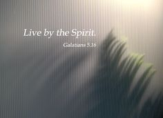 The Verse of the Day for January 16, 2015 is found in Galatians 5:16 in the New Living Testament. Description from drlej.wordpress.com. I searched for this on bing.com/images