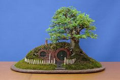 Bonsai - lord of the ring -