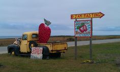 Pick your Own Fruit Farms in the SF Bay Area Santa Cruz California, Northern California, California California, Sunset State Beach, Santa Cruz Camping, Honor System, Farm Stand, Camping Lights, Fruit In Season