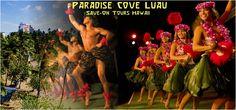 Image from http://www.savontourshawaii.com/imagesTour/paradise_cove_luau_hawaii_discount_tickets_best_dinner_shows_vacation_hula_girls_hi_ca_la_activities_eat_authentic_hawaiian.jpg.