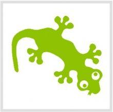 strijkapplicatie gekko