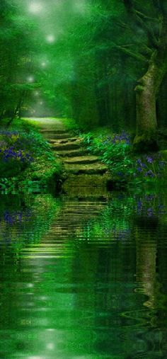 Path: Spirit of the woods • photo: Angie Latham on Redbubble