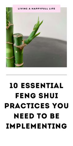 In this post, I walk you through the top 10 feng shui tips to improve your home ., In this post, I walk you through the top 10 feng shui tips to improve your home or office and cultivate good energy. Whether you're looking to feng sh. Feng Shui Your Bedroom, How To Feng Shui Your Home, Feng Shui House, Feng Shui Entryway, Feng Shui For Office, Feng Shui Bedroom Mirror, Feng Shui Living Room Layout, Feng Shui Dining Room, Feng Shui Espejos