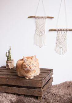 DIY Macramé muurhanger maken Diys, Diy Projects, Animals, Baby, Fashion, Animales, Moda, Bricolage, Animaux