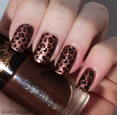 Oooh, Shinies!: Kitty stuff!  I used HEMA 08 and stamped it with Konad black and plate m57, and colored it in with a dotting tool and Catrice Bronzed Brown. I prefer the previous tigermani over this, but I liked this one as well :)