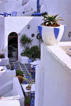 White and Blue, Santorini, Greece photo via eve