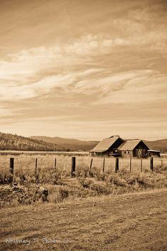 Empty barns in Whitney, Oregon.