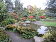 Don't Miss Azalea Lane in Spring - Review of Washington Park Arboretum, Seattle, WA - TripAdvisor