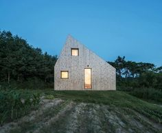 Image result for dezeen asymmetrical pitched roof