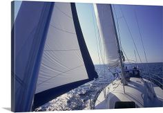 sailing canvas photo love this!